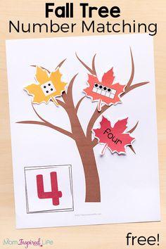 Fall Tree Number Sense Matching Activity Fall Preschool Activities, Printable Activities For Kids, Preschool Learning, Kindergarten Math, Fun Learning, Counting Activities, Preschool Printables, Preschool Lessons, Alphabet Activities