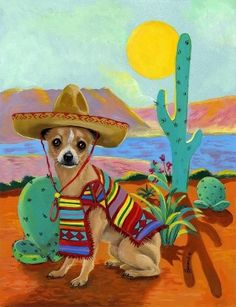 Chihuahua, Mexican :0