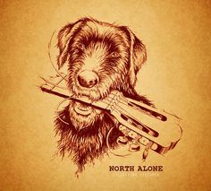 "Check out our review on ""Collecting Pictures"", North Alone's new album. If you like singer songwriter folk punk like The Gaslight Anthem, you will most likely also like North Alone."