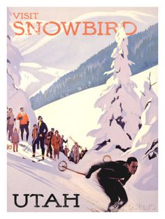 6f7ba4b5d68 27 Best Snowbird Ski Resort images