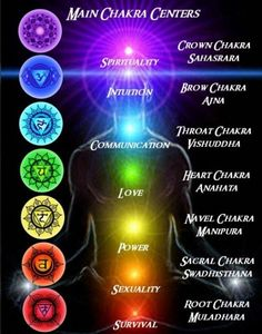 If you visualize the colors of the chakras in the movie of your mind starting from the root chakra up, you will automatically go to the state of Alpha, 7-14 brain cycles per second.  ~Ming  Spirit Science 2 ~ Chakras