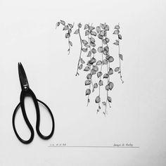 Affiche botanique en noir et blanc