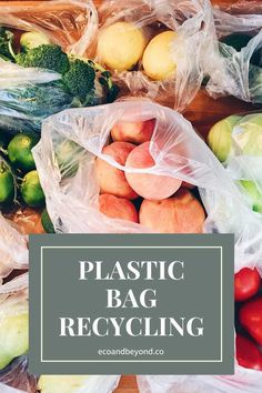 Plastic Bag Recycling: Where Will We Be a Thousand Years From Now?