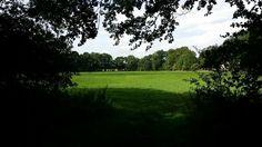 Het weer blijft mooi (@ Familie Bouwman in #Babberich, Gelderland; gemeente #Zevenaar). Woensdag 13 augustus 2014. Via twitter @Michel_Bouwman.