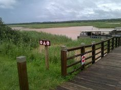 Photo: Burt Van Heerden First things first. St Lucia Estuary mouth is still not open. Water levels is way above high water mark and probab. Wetland Park, Water, Outdoor Decor, Travel, Gripe Water, Viajes, Destinations, Traveling, Trips