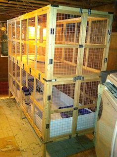 Bright Eyes Sanctuary - Housing Suggestions (3'x8'  24 sq ft) 7-13lb buns)