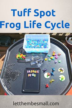 A great tuff spot activity for young toddlers or pre school children to learn about the four main stages of the frog lifecycle. Can be easily extended for older children Frog Activities, Nursery Activities, Spring Activities, Preschool Activities, Lifecycle Of A Frog, Growth And Decay, Tuff Spot, Frog Life, Tuff Tray