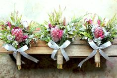 BUTTONHOLE INSPO Proteas last really well. Pink Ice Protea, Brunia Albiflora, Pink Kangaroo Paw, Geraldton Wax and more of the native foliage. Each of the bridesmaids dresses were different - a Protea Bouquet, Protea Flower, Silk Flower Bouquets, Wax Flowers, Table Flowers, Bridal Flowers, Colorful Flowers, Protea Wedding, Wedding Bouquets