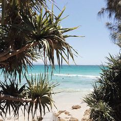 Wategos Beach. Byron bay