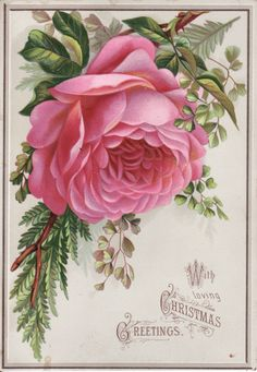 Antique Victorian Scrap Picture Card Christmas Large Pink Rose Fern | eBay