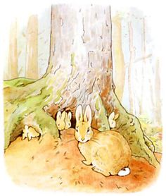 ONCE upon a time there were four little Rabbits, and their names were—                      Flopsy,                  Mopsy,            Cotton-tail,       and Peter. They lived with their Mother in a sand-bank, underneath the root of a very big fir-tree. Illustration from the classic children's story The Tale Of Peter Rabbit, by Beatrix Potter