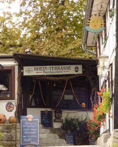 Rhein-Terrasse, Drachenfels - Foto: S. Hopp