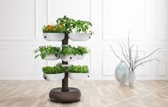 Taiga Tower with self-watering system makes home gardening a breeze -