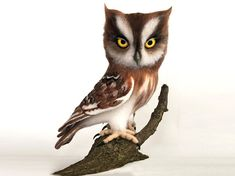 Needle felted realistic owl sculpture