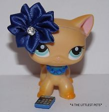 Littlest Pet Shop clothes LPS 3PC ACCESSORIES CAT/DOG NOT INCLUDED