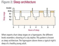 The Biology of Sleep: Circadian Rhythms, Sleep Stages, and Sleep Architecture