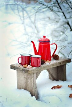 Coffee time in the snow. This could be an additional service we offer our guests in the winter. Coffee, hot tea, or cocoa brought to you during your winter outdoor activities. Winter Love, Winter Snow, Winter Christmas, Winter Walk, Cozy Winter, Christmas Morning, Winter Porch, Hygge Christmas, Christmas Windows