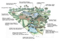 Sustain a Family of 4 on a One Acre Mini-Farm. Fruit, vegetables, fish, chickens, goats, water storage, etc. all on one acre. This is for a tropical climate, make plant adjustments for your area…