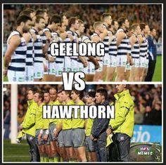 2016 #AFLCatsHawks #AFLFinals #2016QF2 Funny Pics, Funny Pictures, Funny Memes, Jokes, Jimmy Bartel, Aussie Memes, Australian Football League, Australia Funny, Free Kick