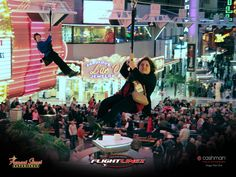Zip Line Las Vegas // Ready to head to Las Vegas? Contact Travel Leaders today. travel@tvlleaders.com   651-731-9706