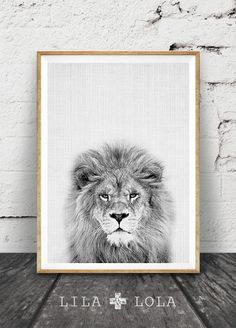 Black & White Lion Print