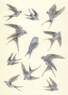 Blue bird drawings, love the one in the top right corner.
