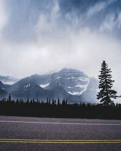 green pine trees near snow covered mountain during daytime photo – Free Jasper Image on Unsplash