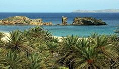 Vai Palm Beach Crete Heraklion, Crete Island, Crete Greece, Famous Places, Car Rental, Palm Beach, Travel Guide, Things To Do, Nostalgia