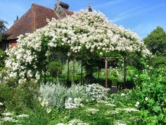 The photo to the right is of the white garden at <b>Sissinghurst</b> Castle ...