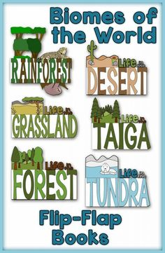 Biomes of the World Flip-Flap Books by Simply Skilled in Second a Teaching Blog for 2nd & 3rd Grade Teachers   The Forest, The Tundra, The Taiga, The Grassland, The Desert and The Rainforest. Each flip flap book allows for the students to research the Biome's weather, temerature, plant/tree life, and animal life and organize their facts. I even included Map Skills in each flip flap book. #flipflapbook #biomes #2ndgrade #3rdgrade #teachingresources #simplyskilledinsecond