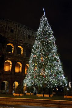 Christmas in Rome by fabiop85, via Flickr