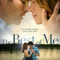 The Best Of Me (2014) Review