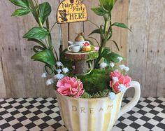 Urban Gardening - Learning How To Garden Like A Pro! Mini Fairy Garden, Fairies Garden, Teacup Crafts, Fairy Gifts, Garden Birthday, Tea Gifts, Flower Tea, Miniature Fairy Gardens, Fairy Houses
