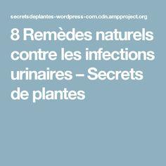 8 Remèdes naturels contre les infections urinaires – Secrets de plantes