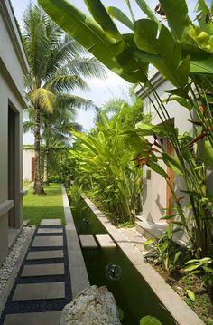 Tropical Garden Design, Tropical Backyard, Tropical Houses, Courtyard Design, Fence Design, Coastal Landscaping, Backyard Landscaping, Dream House Images, Side Garden