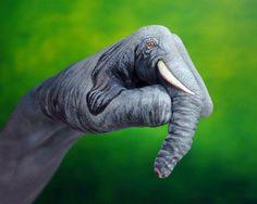elephant hand