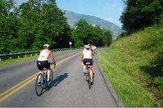 entry-level-road-bike