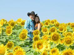 Grinter farm sunflower engagement pictures
