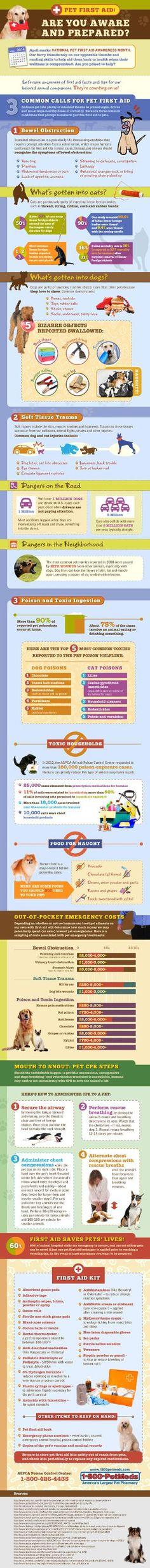 Pet First Aid Awareness | Infographic | 1800PetMeds
