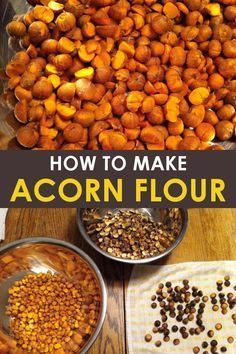 Learning how to make acorn flour is a fun fall activity for the whole family! This step by step guide to making acorn flour is perfect for beginners! Plus, you can make acorn flour chocolate chip cookies for a delicious fall dessert! #fall #fallrecipes #fallactivities #homesteading #homestead #acorns #acornflour #whattodowithacorns