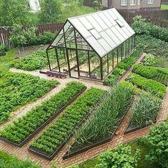 Vegetable Garden Planning, Backyard Vegetable Gardens, Cottage Garden Plants, Potager Garden, Veg Garden, Vegetable Garden Design, Greenhouse Gardening, Farm Gardens, Outdoor Gardens