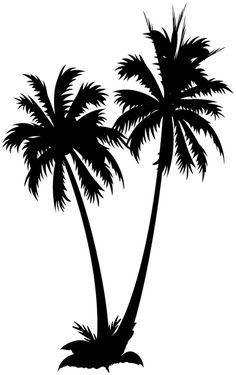 1000 images about dessin on pinterest palms palm trees - Palmier dessin ...