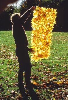 Natural sculptures by Andy Goldsworth