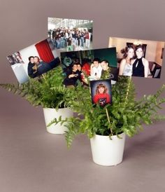 92 Best Graduation Centerpieces Tablescapes Images Grad Parties