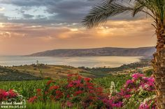 The Sea of Galilee by michael.shmidt.art