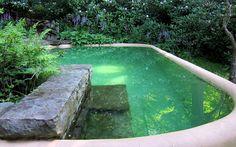 Biologiques, biotiques, écologiques, naturels… autant de termes utilisés pour définir les bassins paysagers. En réalité, dans le résidentiel, on rencontre peu de piscines 100 % bio, qui...