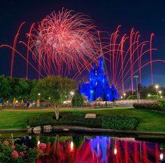 Sorry I haven't posted in a while guys!! I've been super busy..hope you enjoy! #WDW #Disney #WaltDisneyWorld  #HappiestPlaceOnEarth #CelebrateADreamComeTrue #CelebrateTheMagic #MyHome #WhereDreamsComeTrue #WishUponAStar