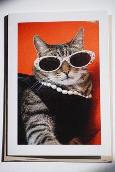 Cat Card  Purrfectly Gigi  Sassy Card  blank by PurrfectlyGigi