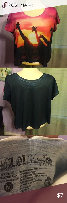 Giraffe Crop Very excellent condition, bright colors! L.o.l Tops Tees - Short Sleeve