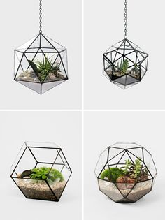 amazing hanging planters!